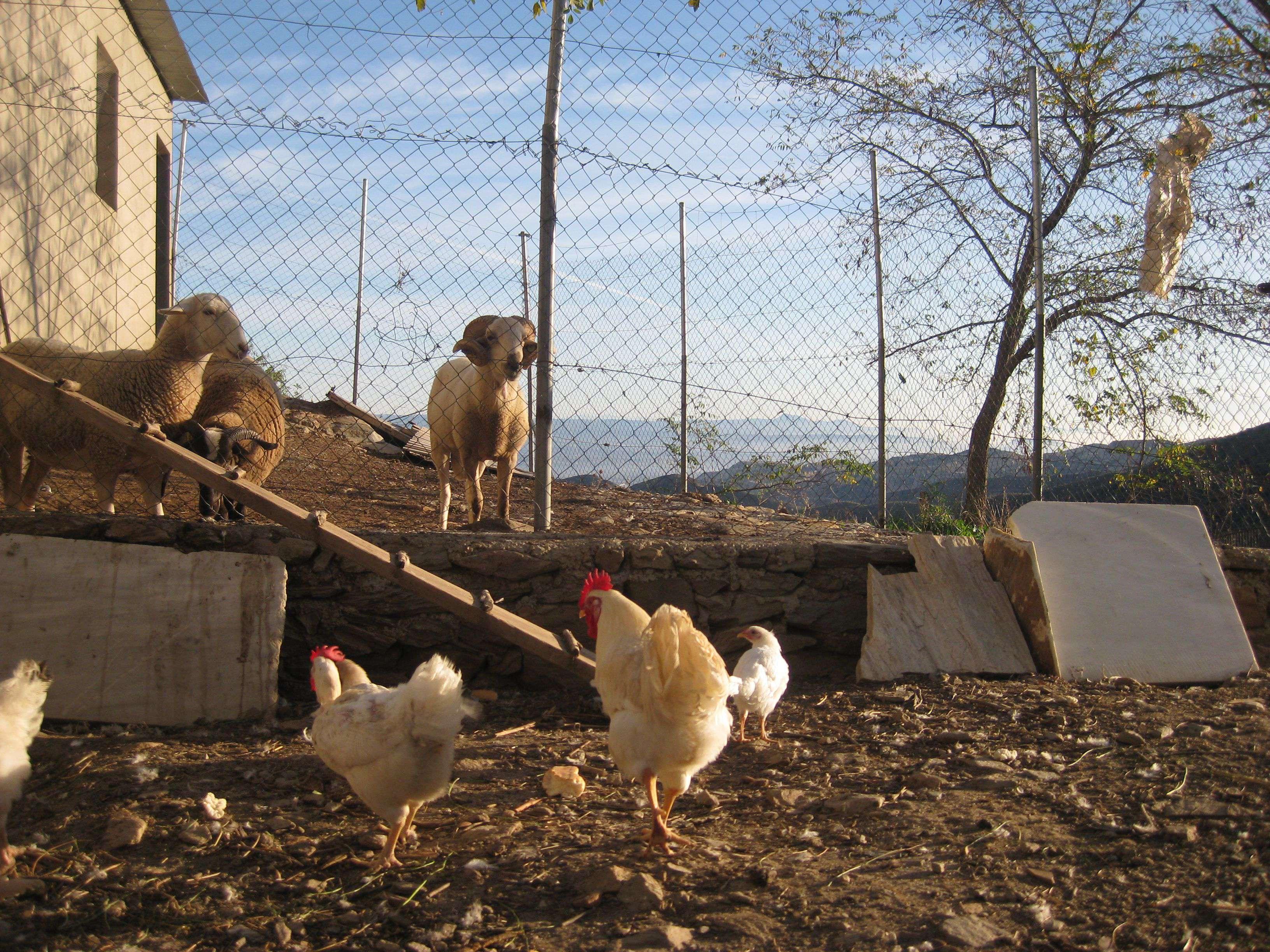Casa Rural ReulAlto